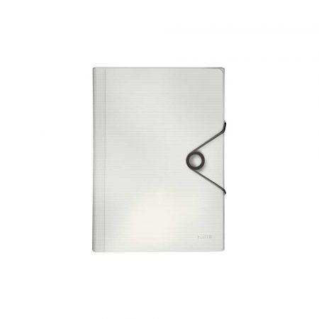 teczka lakierowana 5 alibiuro.pl Teczka z przegródkami Leitz Solid biały 24